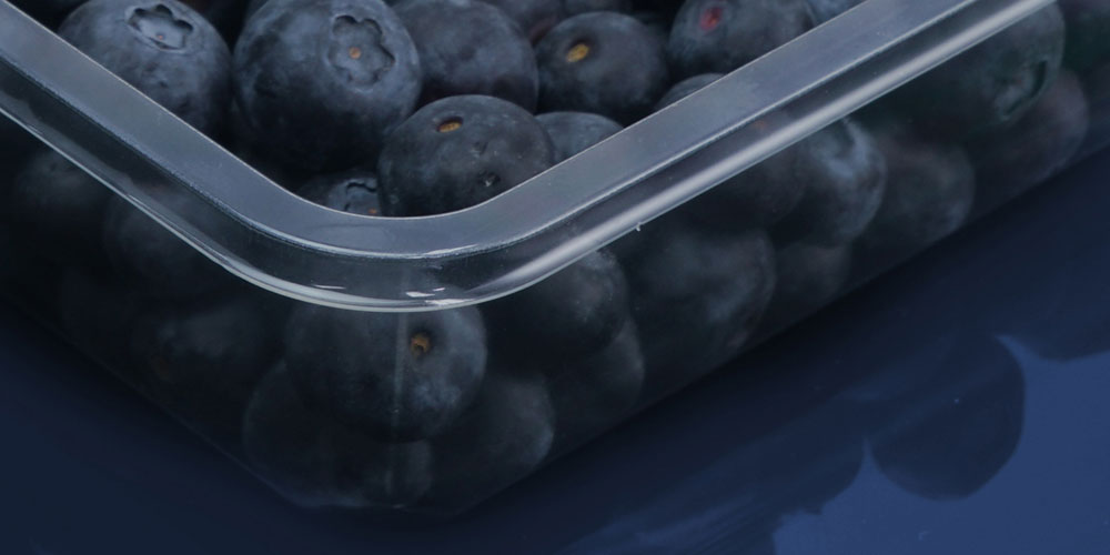 Detail of food grade thermoformed tray for fresh fruit